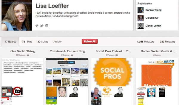 Lisa Loeffler Social Media Infographic on Pinterest