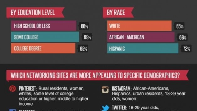 Infographic - Social Media Demographic and Statistic