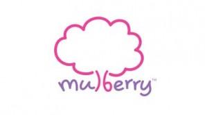 http://www.hashmeta.com/wp-content/uploads/2015/12/mulberry-logo-296x167.jpg