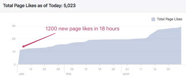 Facebook Page Likes Growth