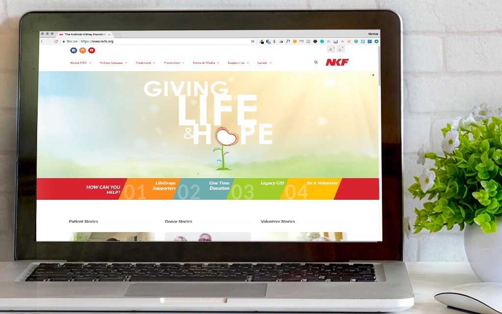 website campaigns - National Kidney Foundation Web Design & Development (Revamp) - Hashmeta
